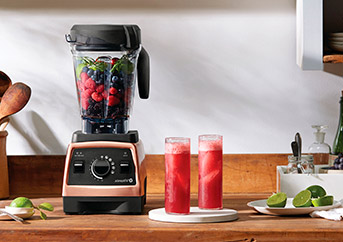 Vitamix E310 and vs E320
