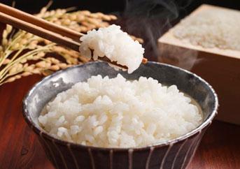 Sushi Rice Brand