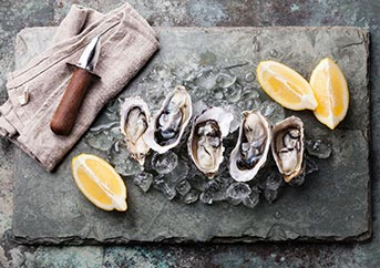 Best Oyster Knives